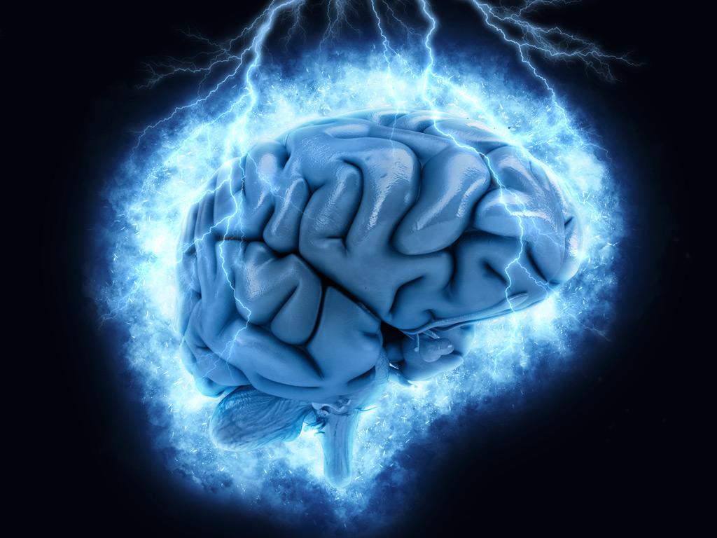 Quais são os resultados da otimização do Sistema Nervoso em nosso corpo?
