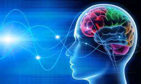 Sistema Nervoso x Estímulos externos